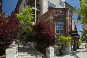 Tera Apartments